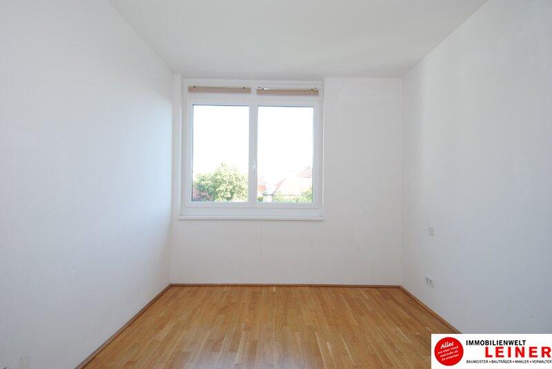 * BARRIEREFREI* Himberg - 3 Zimmer Mietwohnung mit großer Terrasse und Grünblick Objekt_8836 Bild_497