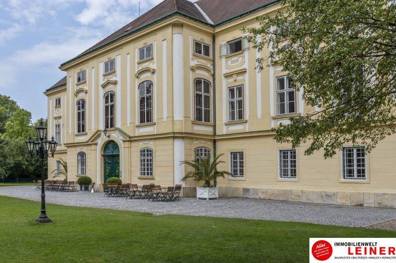 Margarethen am Moos - Geschichtsträchtiges Anwesen an der Grenze zu Wien Objekt_11233 Bild_517