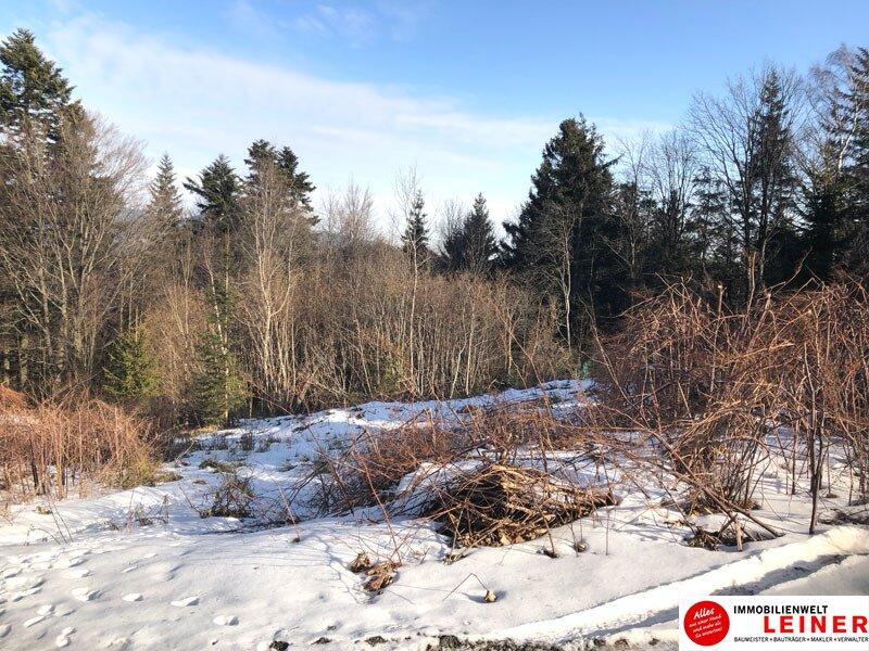 Einzigartiges Grundstück am Semmering Objekt_10230 Bild_458