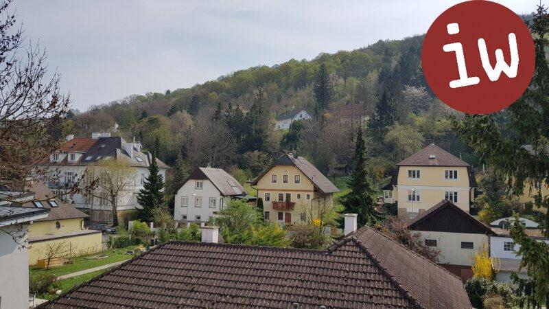 Sonnige 3 Zimmerwohnung mit Loggia, nahe Zentrum Klosterneuburg Objekt_580