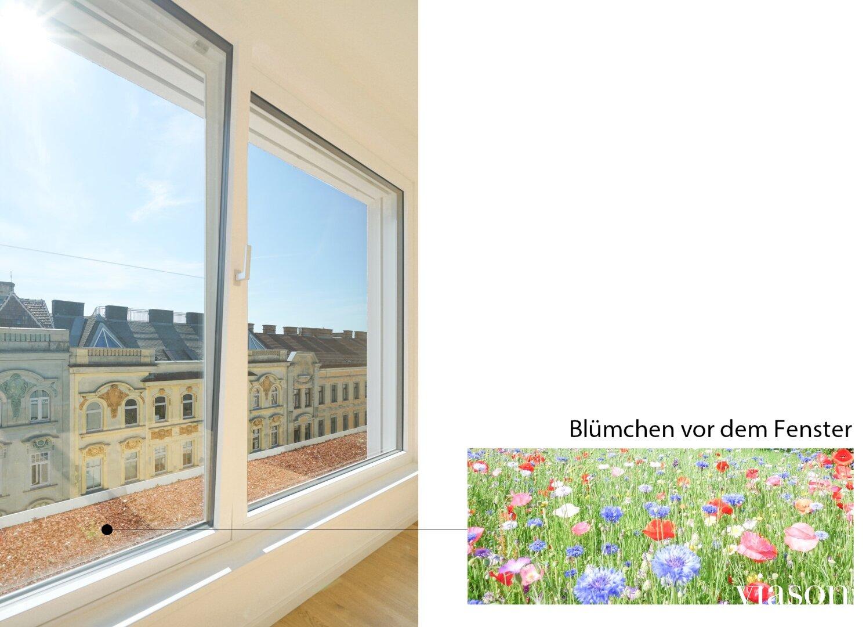 Blumen vor dem Fenster