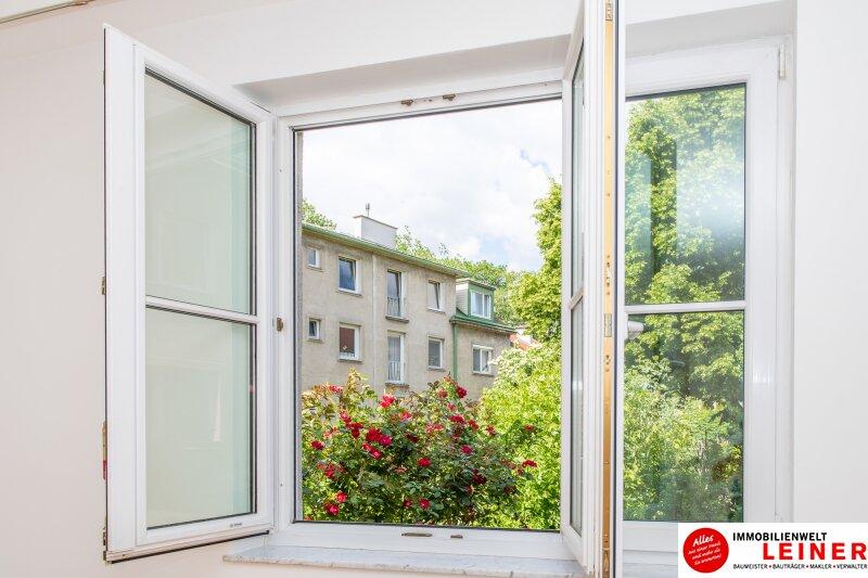 *sofort verfügbar* Mitten im Zentrum - wohnen in Schwechat Objekt_11394 Bild_190