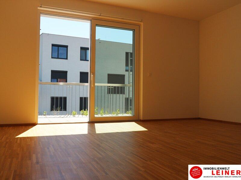 Wunderschöne Dachgeschoßwohnung mit Terrasse direkt im Zentrum Himberg Objekt_8898 Bild_200