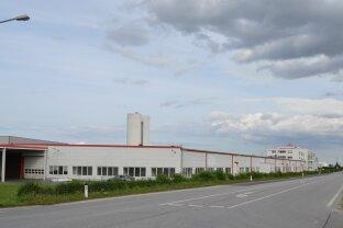 Moderne Produktions / Lagerhalle nahe Autobahnanbindung Wr. Neustadt, Sofortbezug !!!
