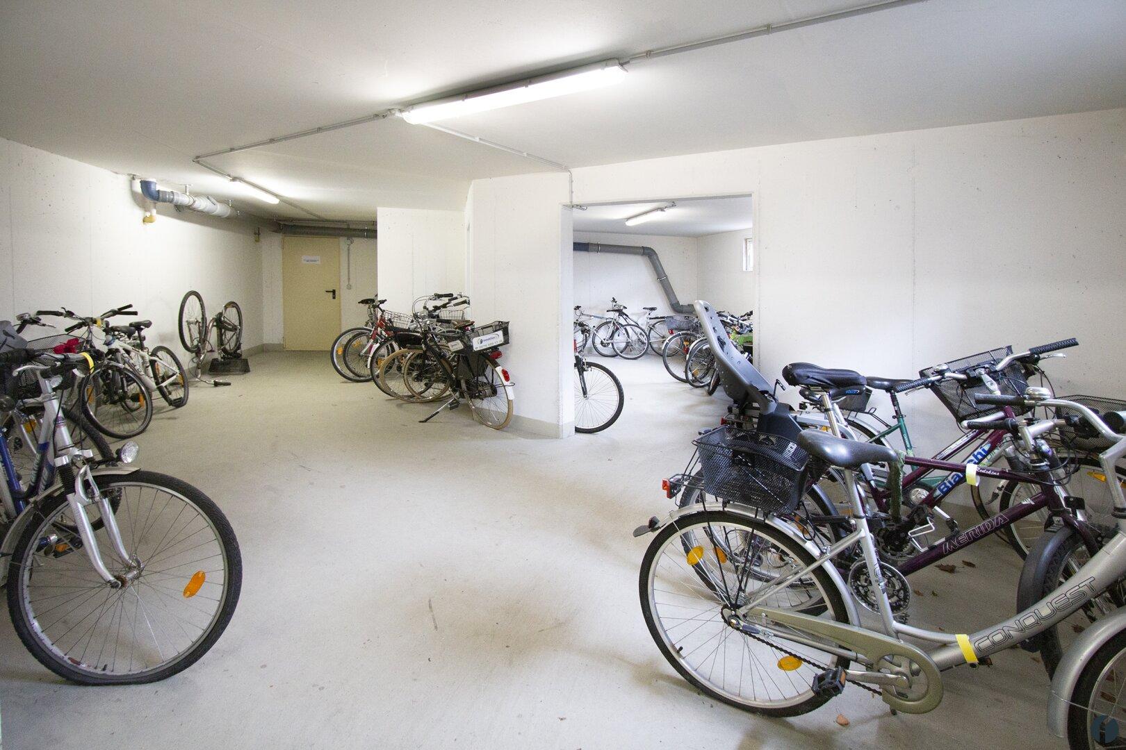 sehr großer Fahrradkeller