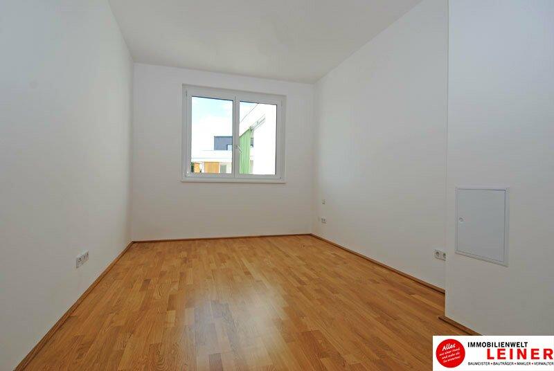 *UNBEFRISTET* Schwechat - 2 Zimmer Mietwohnung im Erstbezug mit großer Terrasse und Loggia Objekt_8644 Bild_163