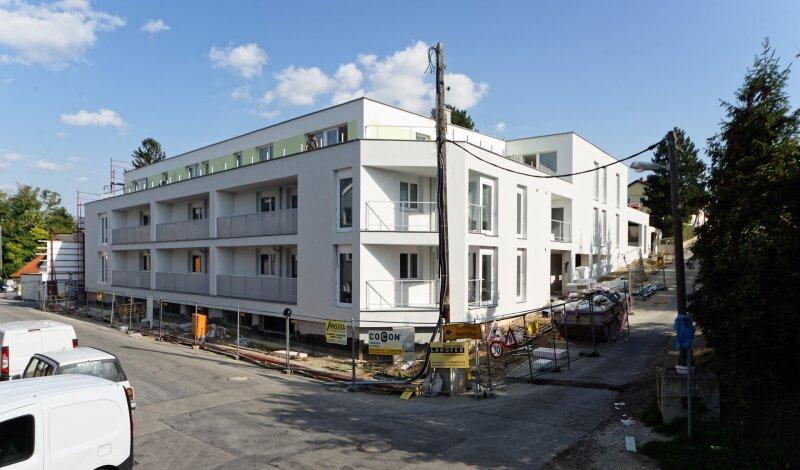 Ruhige Eigentumswohnung nahe Zentrum von Wolkersdorf - Top 1