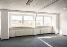 Modernes Büro - 355 m2 südlich von Wien in Wr. Neudorf