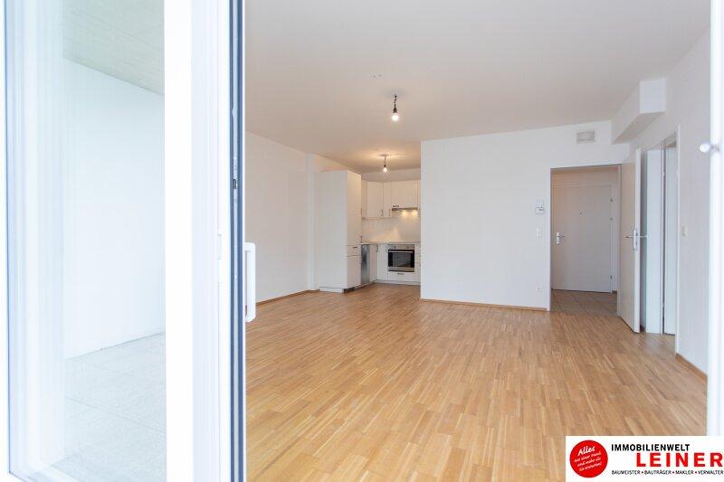 Himberg - 2 Zimmer Mietwohnung mit großartiger Terrasse Objekt_9655 Bild_623