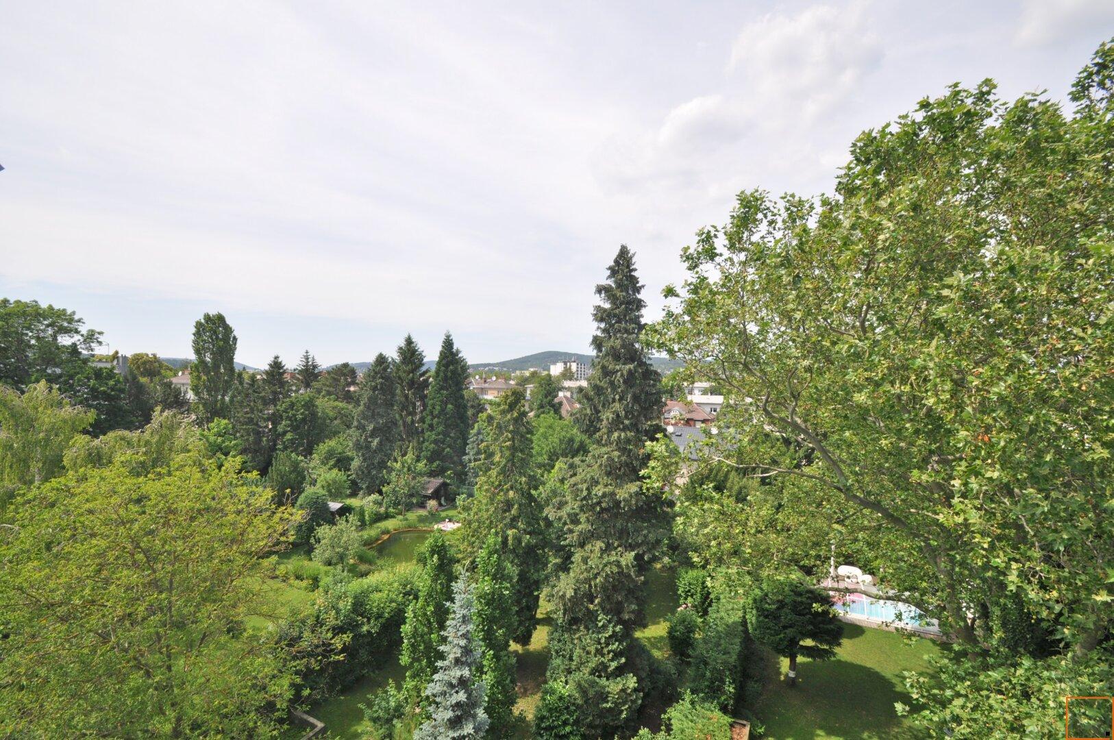 Ausblick - Terrasse vom Wohnzimmer