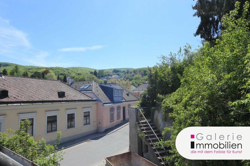 Bezaubernde Dachgeschoßwohnung mit Terrasse und schönem Blick Objekt_34991