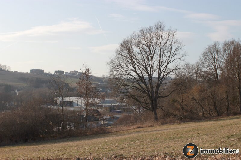 Sonnige Liegenschaft in der Golf- und Thermengemeinde Stegersbach /  / 7551Stegersbach / Bild 3