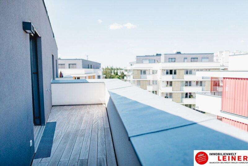 Schwechat - Penthouse - inklusive 28 m² Terrasse Objekt_9966 Bild_278