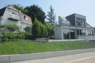 Modernes Einfamilienhaus Nähe American International School