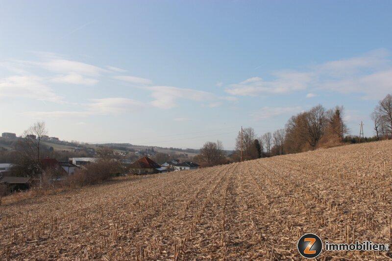 Sonnige Liegenschaft in der Golf- und Thermengemeinde Stegersbach /  / 7551Stegersbach / Bild 0