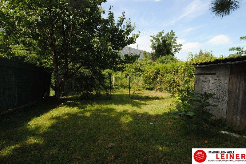 Einfamilienhaus in Schwechat - Endlich genug Platz! Objekt_8935 Bild_818