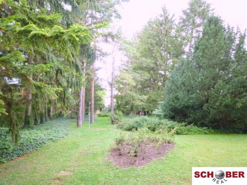 Entzückendes Haus ideal für Singles! - Gartenmitbenützung! /  / 2326Lanzendorf / Bild 1
