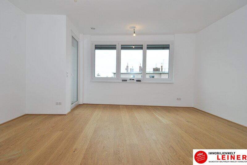 Schwechat - 57 m² Mietwohnung mit Terrasse im Zentrum - Erstbezug Objekt_9320 Bild_682