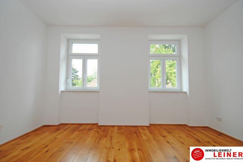 wunderschöne, helle 3 Zimmermietwohnung im Herzen von Schwechat Objekt_8917 Bild_962