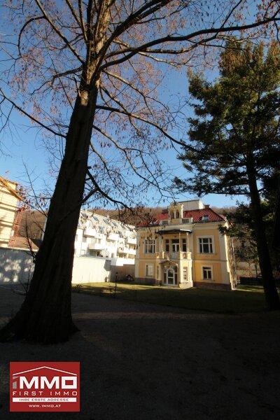 Atemberaubende Dachgeschoß-Maisonette mit Terrasse in Historischer Villa mit Blick in den Wienerwald! /  / 3002Purkersdorf / Bild 12