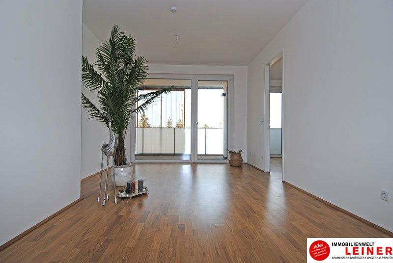 *UNBEFRISTET* Schwechat - 2 Zimmer Mietwohnung mit traumhafter Terrasse ab Februar 2020 Objekt_10038 Bild_888