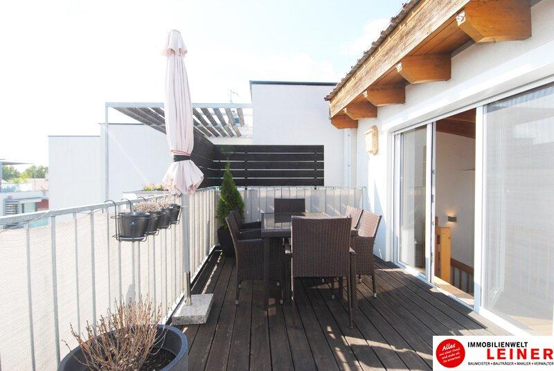 Schwechat - Beeindruckend Wohnen - Maisonette Penthouse Wohnung über den Dächern der Stadt Objekt_8955 Bild_823