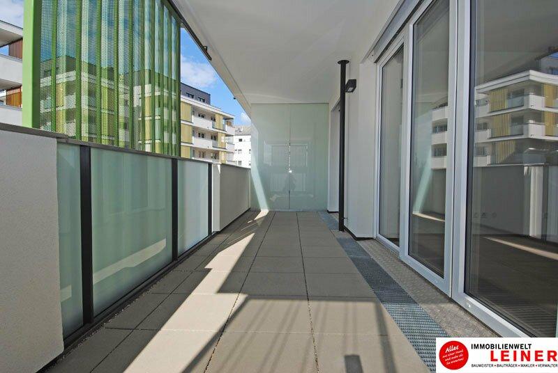*UNBEFRISTET* Schwechat - 2 Zimmer Mietwohnung im Erstbezug mit großer Terrasse und Loggia Objekt_8644 Bild_133