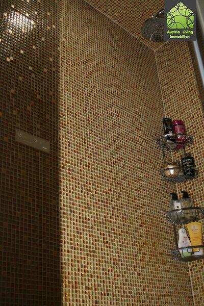 Tolle Dachgeschoßwohnung (eine Ebene) mit großer Terrasse/Rundumblick /  / 1050Wien / Bild 8