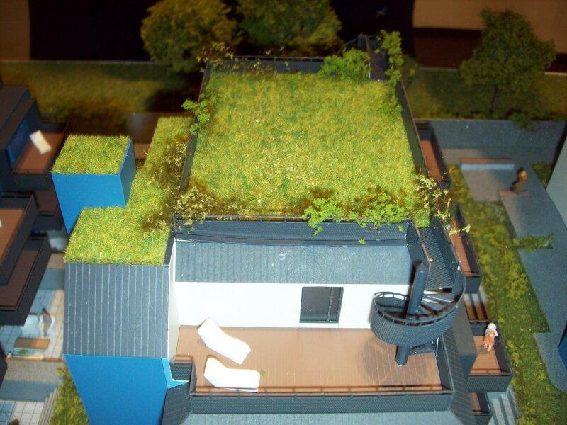 Dachterrassen-Wohnung in Asperner Ruhelage