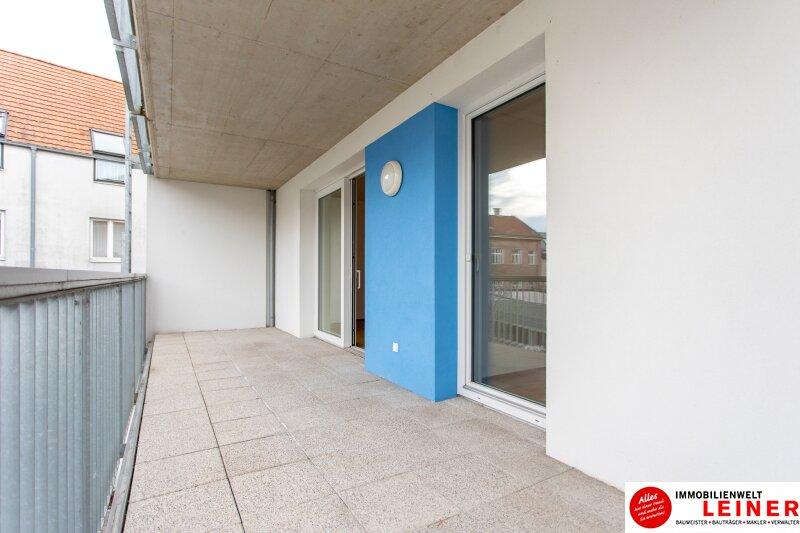 Himberg - 2 Zimmer Mietwohnung mit großartiger Terrasse Objekt_9789 Bild_407