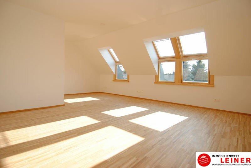 Sonnendurchflutete Dachgeschosswohnung im Herzen von Himberg Objekt_475 Bild_17