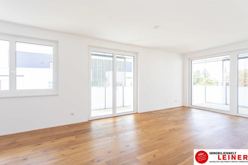 *UNBEFRISTET* Schwechat - 2 Zimmer Mietwohnung im Erstbezug mit großer Terrasse und Loggia Objekt_9406 Bild_467