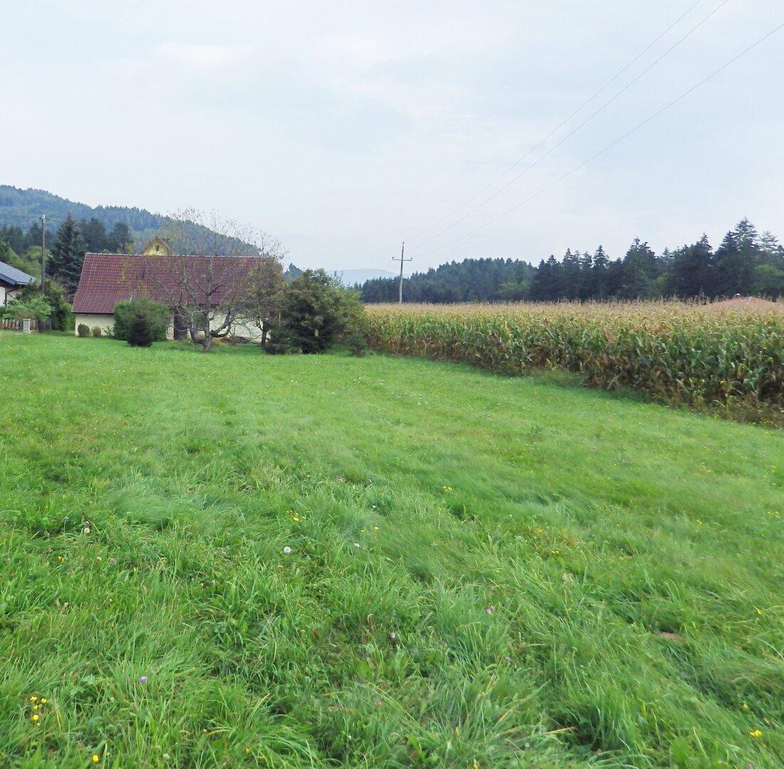 Garten Ansicht 5