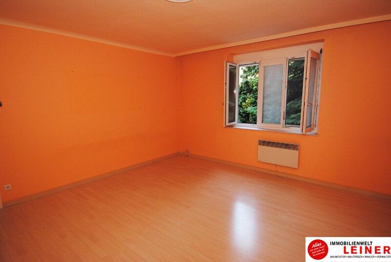 Schwechat - schöne 2 Zimmer -  57m² Mietwohnung nahe dem Zentrum! /  / 2320Schwechat / Bild 1