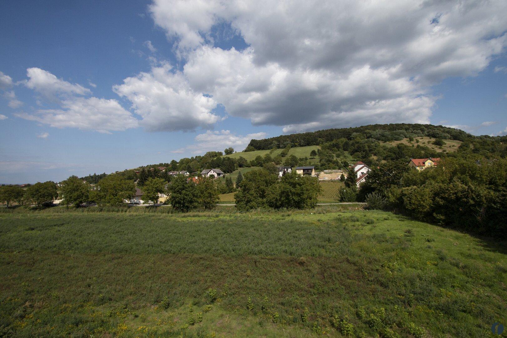 Blick aus Haus 1 zum Kuhberg