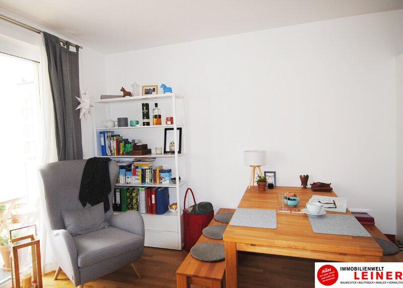 Großzügige Einzimmerwohnung mit Tiefgaragenplatz in Schwechat Objekt_9688 Bild_784