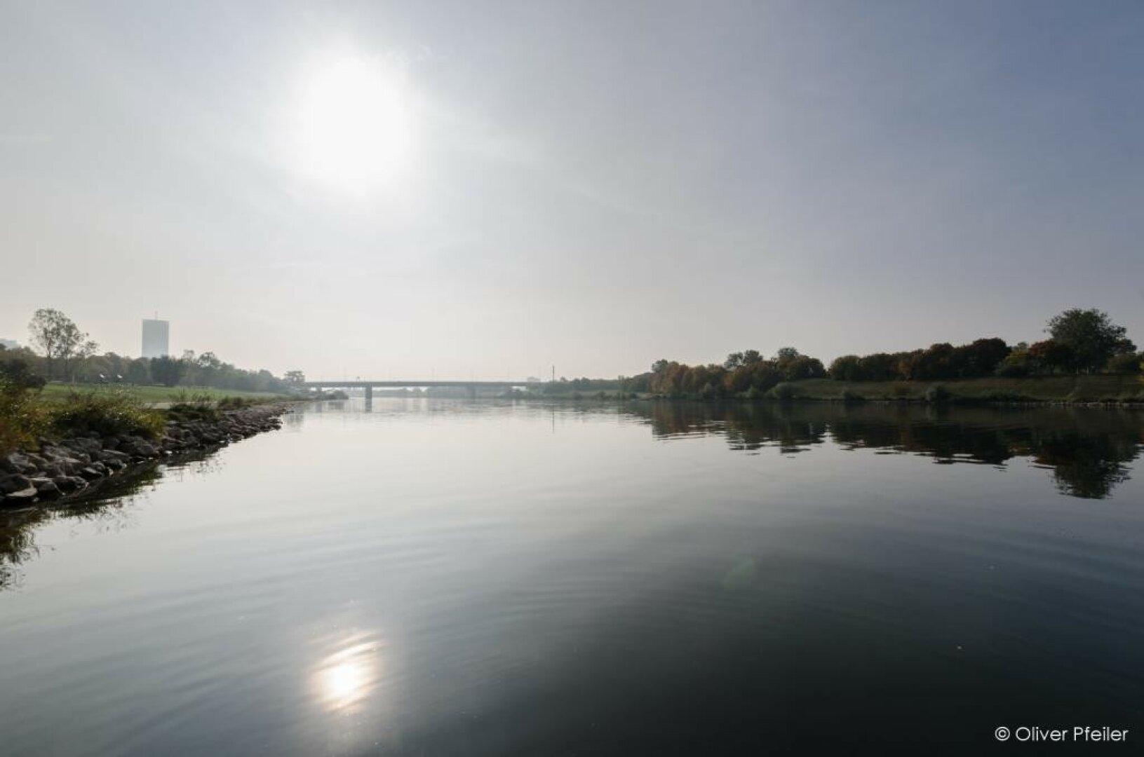 Neue_Donau___