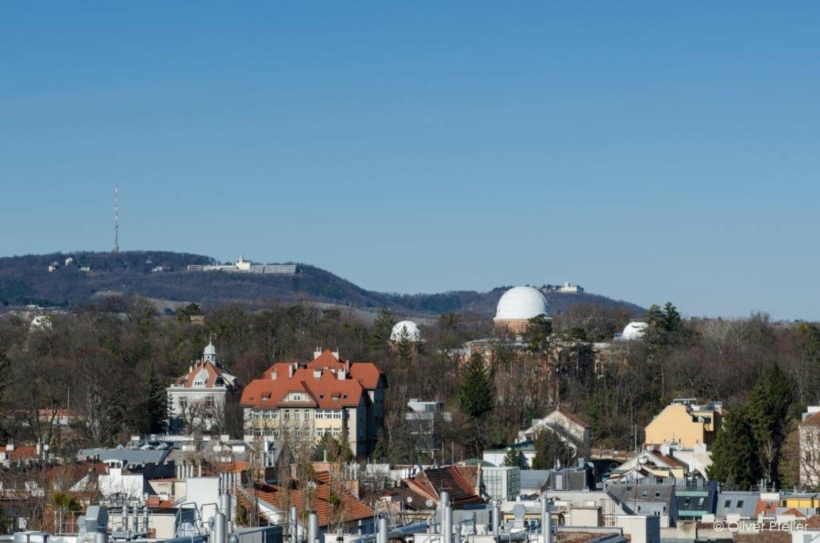 Blick über Sternwarte gegen Kahlenberg