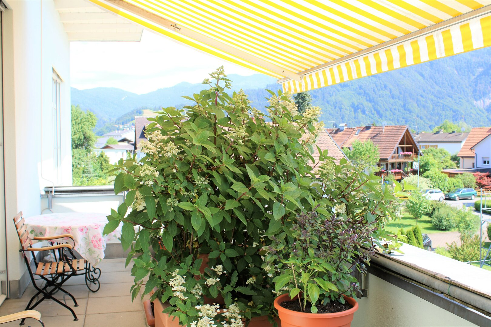 große Terrasse, sichtgeschützt