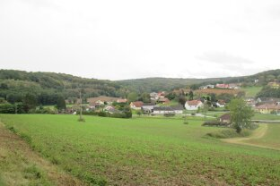 Nähe Güssing: Ruhelage - Grundstück mit 2,7ha