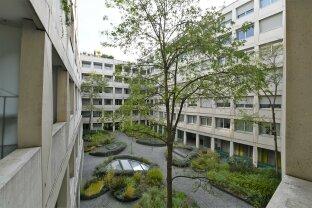 Ruhige, moderne 3-Zimmer Wohnung mit Terrasse nahe 1010 Wien