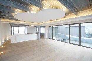 SKY LOFT mit Wienblick Panorama Dachterrasse in der Brotfabrik Wien!