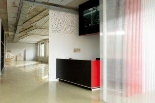 Atelier/Büro/Praxis für kreative Köpfe - Räumlichkeiten in angenehmer Atmosphäre mit großartigen Highlights - Nähe Gasometer