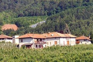 Trentino, Sanzeno / Nähe Cles: Liegenschaft mit Wohnhaus und großem Apfelhain in sehr schöner Aussichtslage zu kaufen