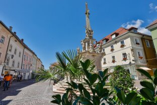 Historisches Zinshaus im Zentrum von St.Veit zu kaufen