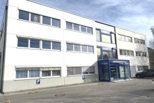 Gut ausgestattete Büros von 90 m² - 180 m²
