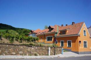 Gemütliches Winzerhaus mit Heurigenlokal und Gewölbekeller - atemberaubender Ausblick - Gumpoldskirchen