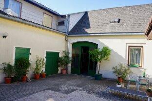Winzerhaus auf ebenem Sonnengrundstück - Gumpoldskirchen