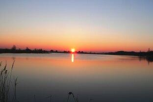 Seeliegenschaft mit Ferienhäuschen - welch ein (Angler)Paradies!  Ungarn, nur 120km von Wien/ 80km von Graz!