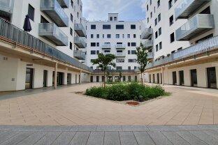500m² Loftartige Büroflächen mit flexibler Raumgestaltung - Provisionsfrei - Nähe U4 Friedensbrücke
